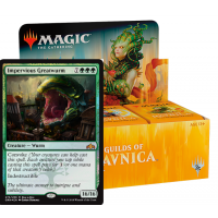 Guilds of Ravnica - Booster Box + Promo Card