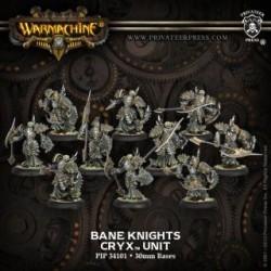Warmachine Cryx Bane Knights - 10