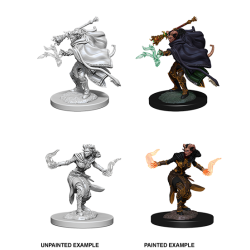 D&D Nolzur's Marvelous Miniatures: Tiefling Warlock