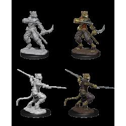 D&D Nolzur's Marvelous Miniatures: Tabaxi Rogue