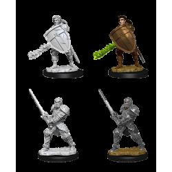 D&D Nolzur's Marvelous Miniatures: Human Fighter