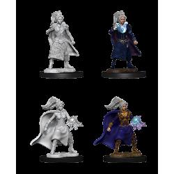 D&D Nolzur's Marvelous Miniatures: Human Sorcerer