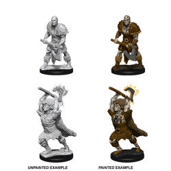 D&D Nolzur's Marvelous Miniatures: Goliath Barbarian