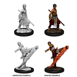 D&D Nolzur's Marvelous Miniatures: Half-Elf Monk