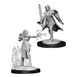 D&D Nolzur's Marvelous Miniatures Unpainted Multiclass Warlock & Sorcerer Female
