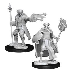 D&D Nolzur's Marvelous Miniatures Unpainted Multiclass Cleric & Wizard Male