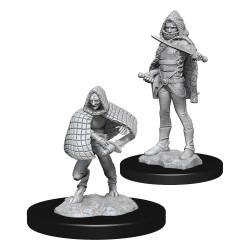 D&D Nolzur's Marvelous Miniatures Unpainted Miniatures Darkling Elder & Darklings