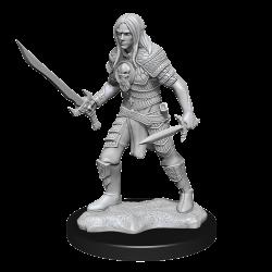 Pathfinder Deepcuts: Elf Male Fighter
