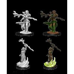 D&D Nolzur's Marvelous Miniatures: Human Druid