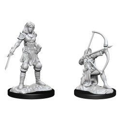 Pathfinder Battles Deep Cuts Unpainted Miniatures Human Fighter Female
