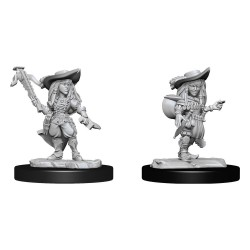Pathfinder Battles Deep Cuts Unpainted Miniatures Gnome Bard Female