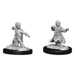 Pathfinder Battles Deep Cuts Unpainted Miniatures Halfing Monk Male