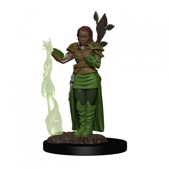 D&D Icons of the Realms Premium Miniature pre-painted Human Female Druid